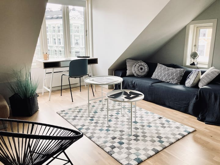 Charming fully renovated apartment in Oslo center
