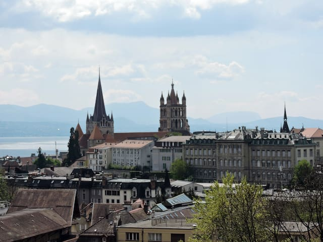 Quiet and beautiful apartment in Lausanne center! - Lausanne - Appartement