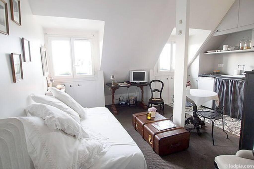 Canapé lit 140 de chez Roche Bobois dépliable très facilement, placards de rangements dans les sous pentes.