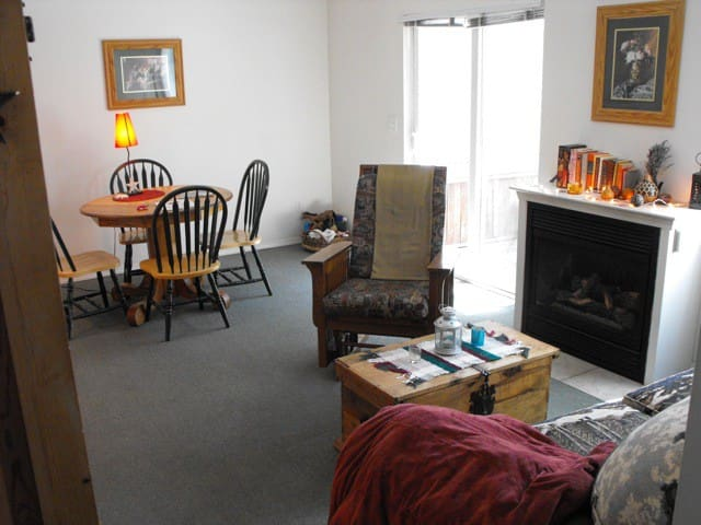The living area, TV/DVD, gas fireplace,  outside hot tub.  Rollaway available also.