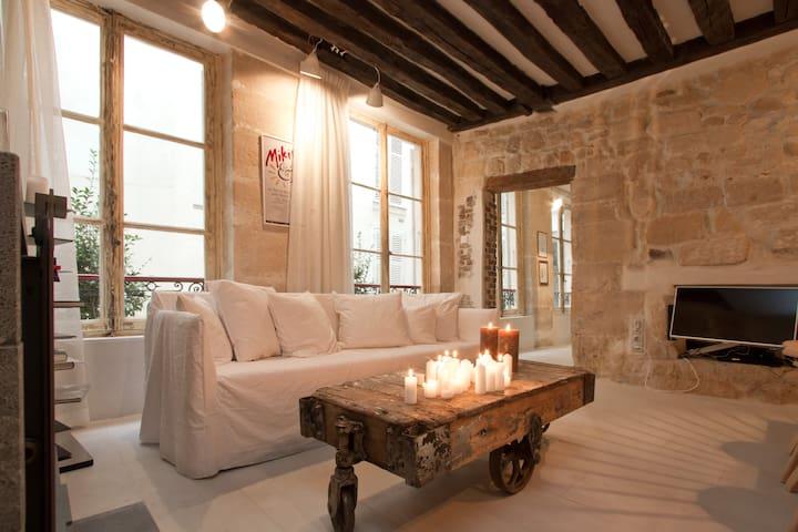 Apt with sauna, St-Germain des Prés - Parijs - Appartement