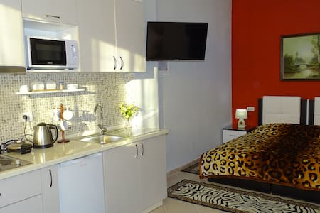 Lovely cozy apartment center Tirana