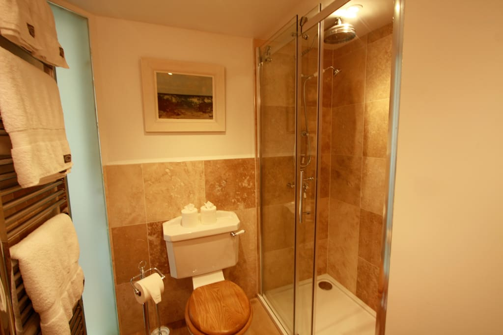 En-suite walk in shower room 1