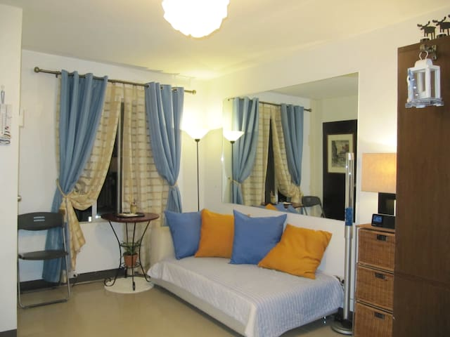 Fully Furnished Big Studio Condo - Mandaue City - Condominium