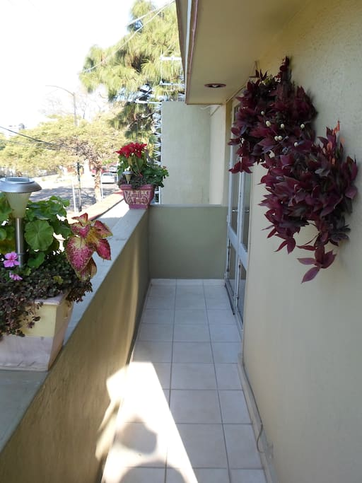 This is one side of a wrap arounf 'street view 'balcony that has a private table and chairs in the far corner -offering privacy above the tree lined street!