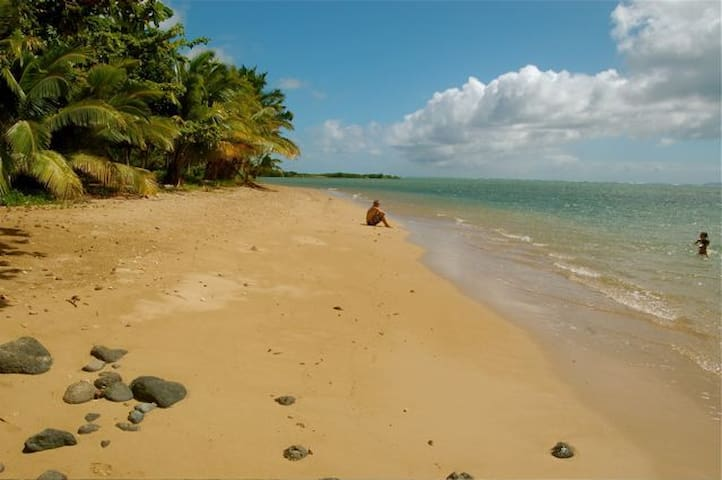 Private, Artful Home - Beautiful White Sandy Beach - Kaunakakai - Hus