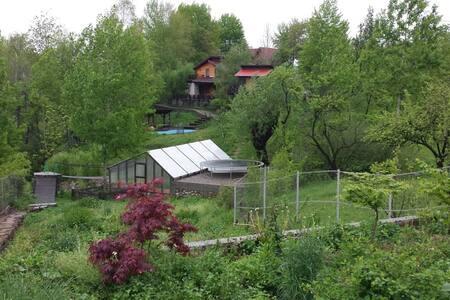 Hidden cottage - Gura Beliei - Casa