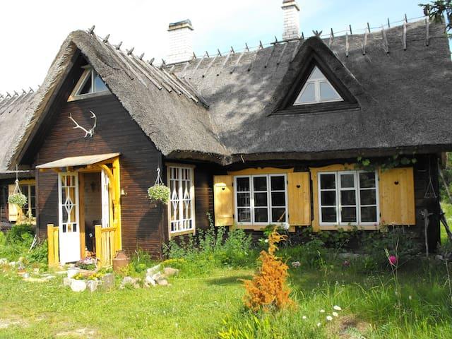 Insel Saaremaa - Natur und Romantik - Leisi Vald - Apartament