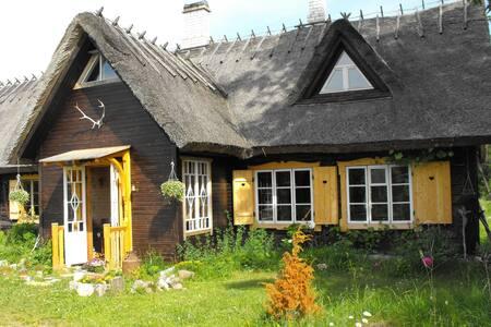 Insel Saaremaa - Natur und Romantik