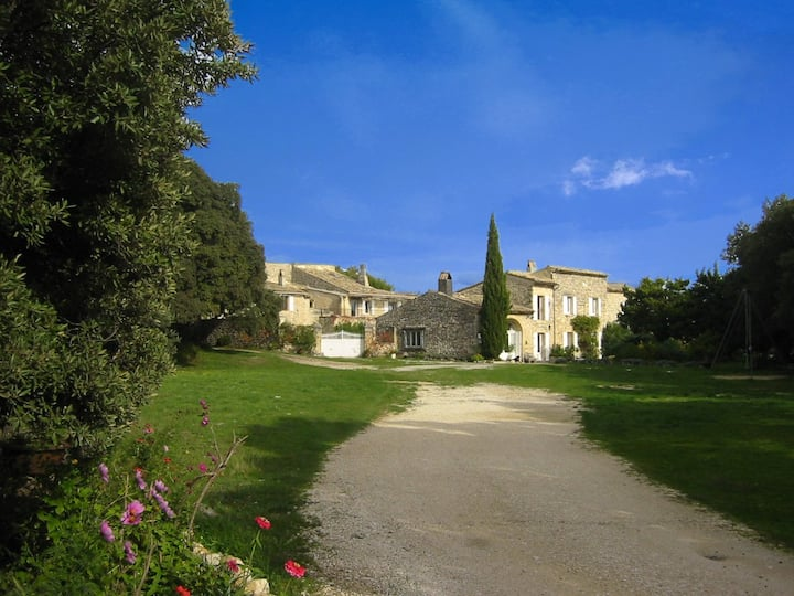 A nest in a typical provencal mas