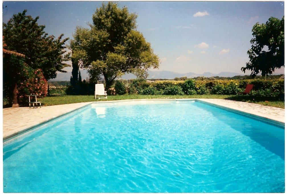 La piscine de 12mx5m, profitez de l'ombre du mûrier platane, ou du soleil pour dorer