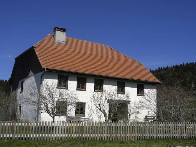Spacious historic farmhouse - Saicourt - Dům