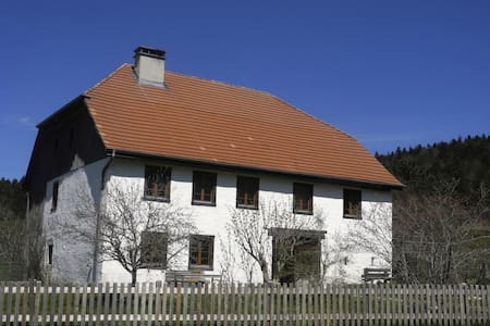 Spacious historic farmhouse - Saicourt
