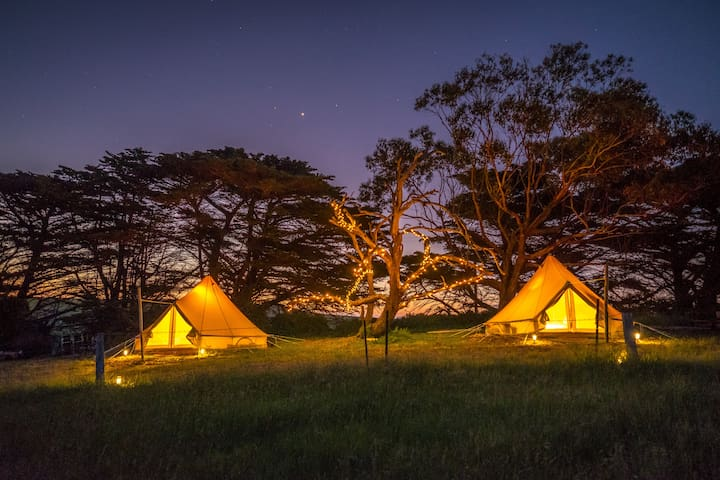 Sheltered Glamping Phillip Island - 'Gentoo' tent