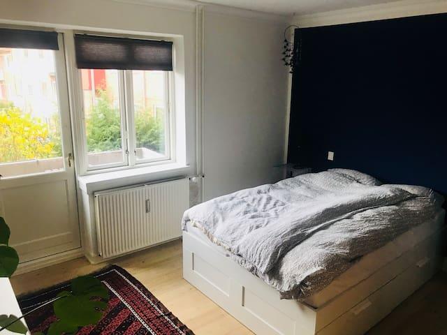 Lys lejlighed tæt på centrum og Odense Å