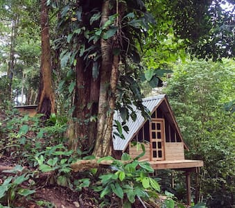 Private A-frame O - Steps From Great Surf - Bocas del Toro Province - Natur-Lodge