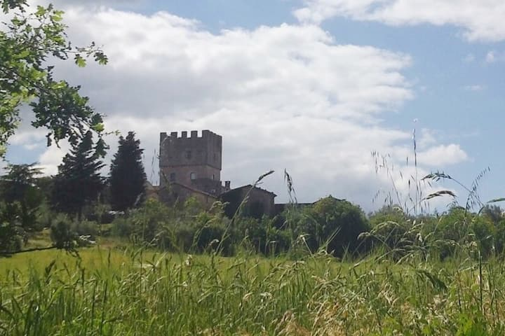 Next to castle of Villa-Siena. heart Francigena