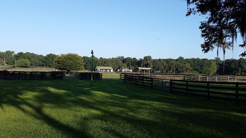 Country cottage on horse farm - Horses Welcome - Ocala - Gästhus