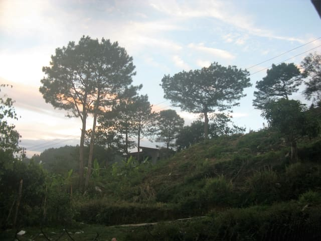 Peaceful Place forGroups of 6 to 12 FreeBreakfast - Baguio - Apartment