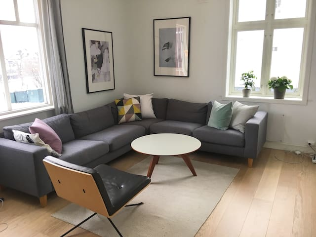 Bright and spacious centrally in Drammen - Drammen - Apartment