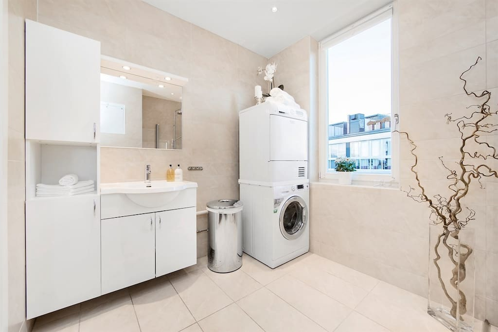 Spacious bathroom with shower, toilet and washing machine