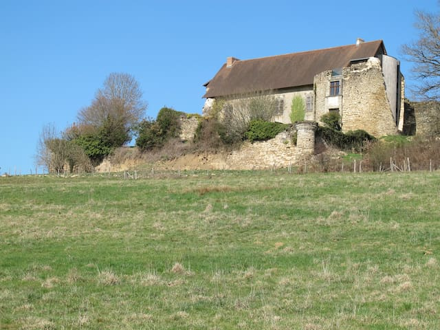 Stay in The Old Castle-cottage #1 - Vicq-sur-Breuilh - Castell