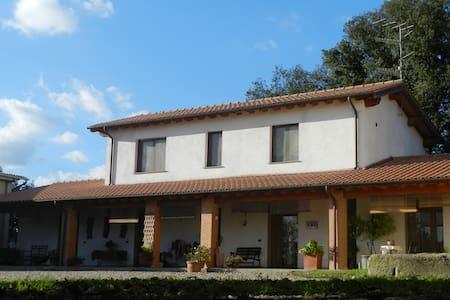 Le Sorgenti - Room Mandela - Civitella Paganico - Apartamento