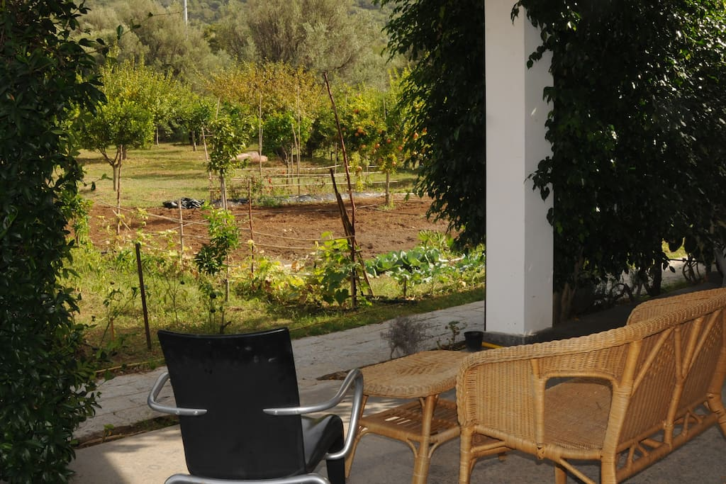 Your private Garden Patio