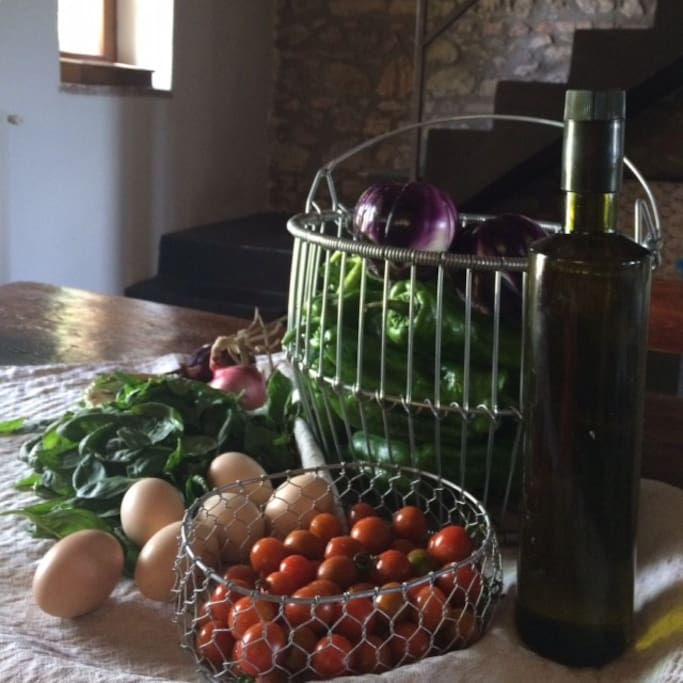 Our homegrown vegetables, oliveoil, eggs...