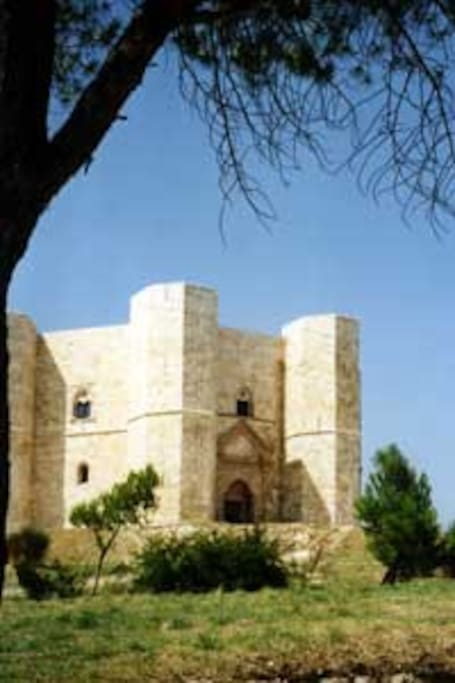 a pochi km dal suggestivo scenario del famoso Castel del Monte