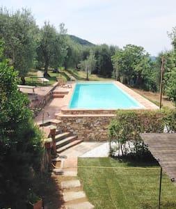 Villa Dell'Ortensia for 8 people - Lucca - Ház