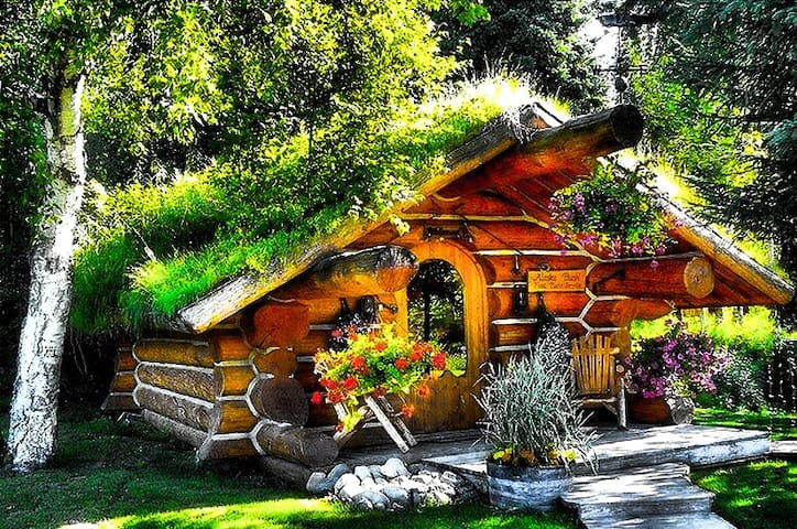 The Hobbit cabin , cozy and unique - Talkeetna