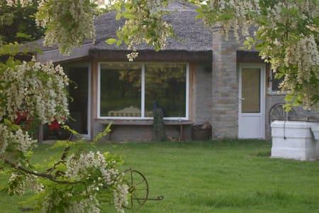 Farmhouse bungalow near Novi Sad