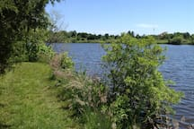 Short walk to pond in back of house