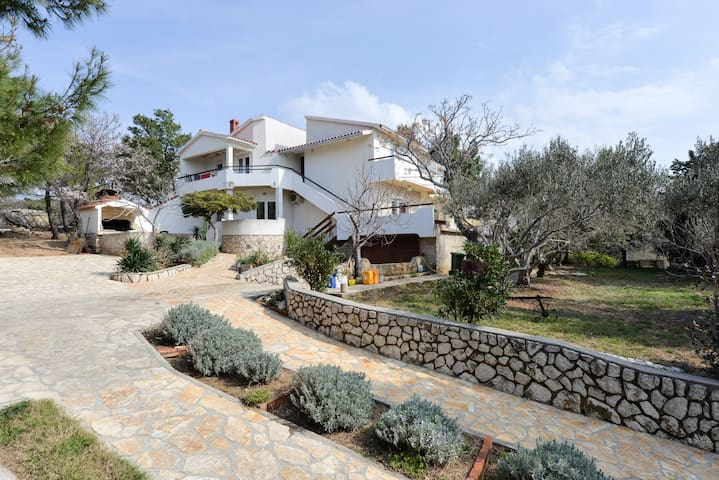 Apartment Adriana 1 -  ideal for our family guests