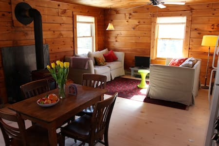 Delightful Cabin with Extras - Bovina Center - House