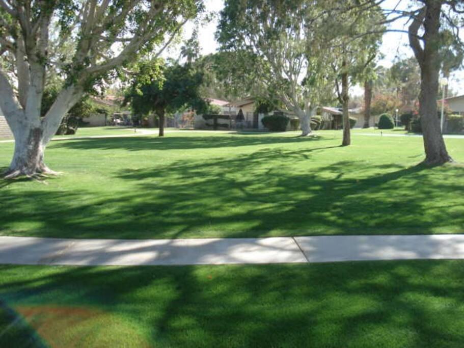 Unit backs onto greenspace