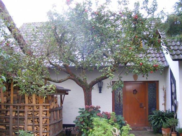 Oase der Stille - Meinhard - 단독주택