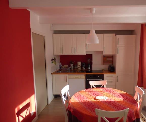 Coin cuisine, four, lave vaisselle, refrigerateur, congélateur et micro ondes.