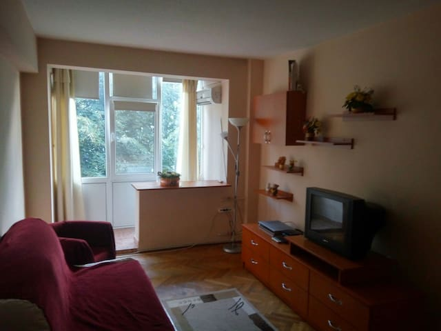 Quaint 5 min to City Center 1 Bedroom Apartment - Ploiești - Apartemen