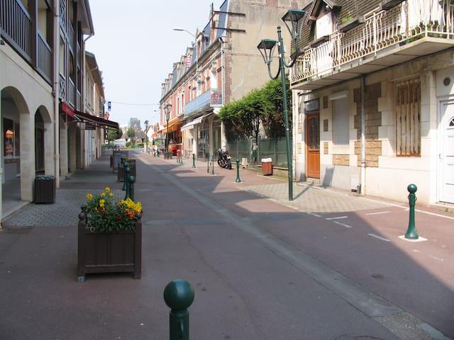 CHARMANT 2 PP - A  150 M DE LA  MER - Blonville-sur-Mer - Apartment