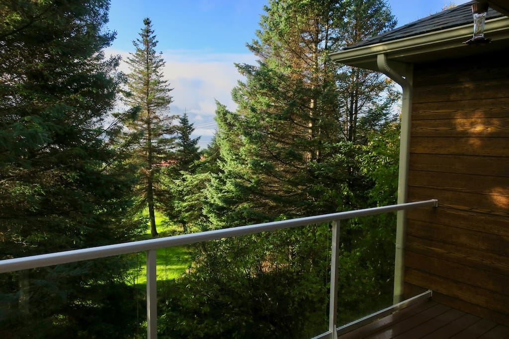 Peek-a-boo view of the mountains across Kachemak Bay from your private balcony.  Some of the trees are being cleared in the near future, so the view to the peaks across the bay will open up soon!