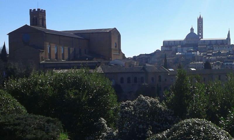 panorama vicino al mio quartiere san prospero (Chiesa di san Domenico e la Cattedrale) view next to the area where I live San Prospero