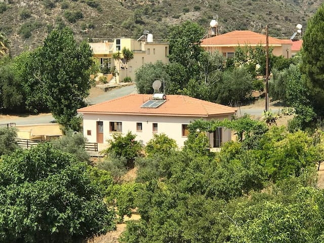 Evie's House