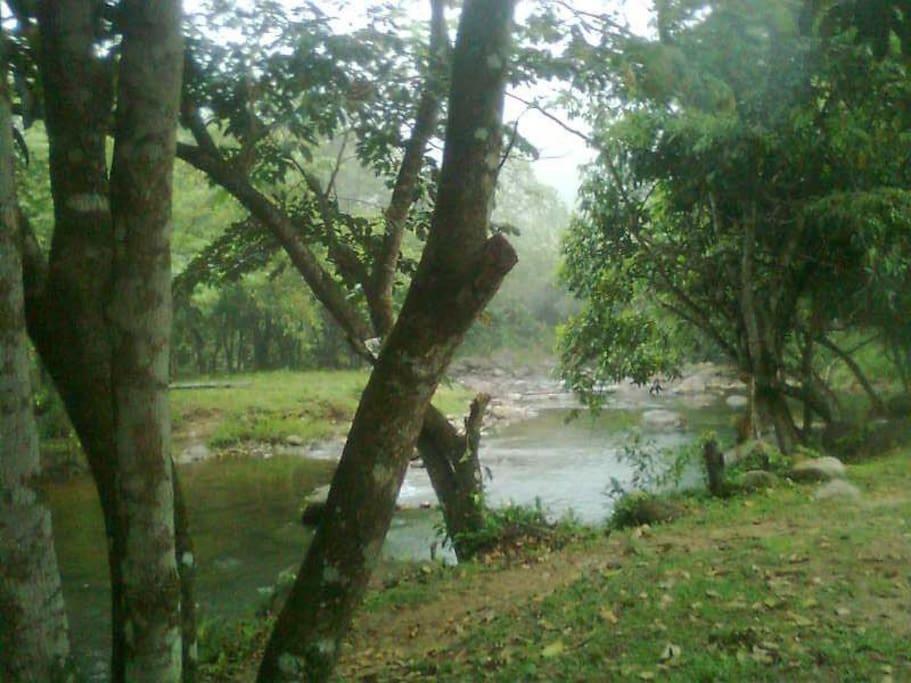 área de natureza exuberante.