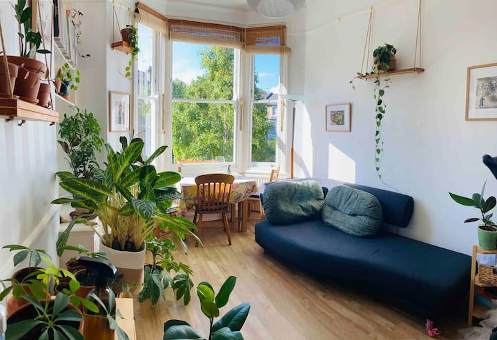 Cosy Flat Minutes From Town on a Peaceful Street