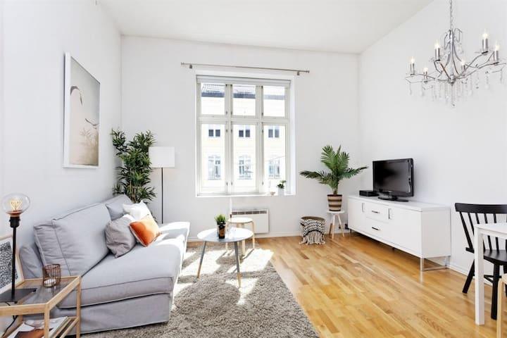 Sentral apartment on Vika/Tjuvholmen