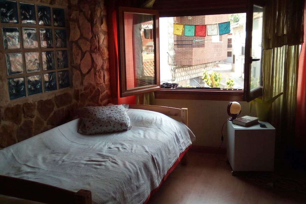 Hay una cama single al pie de la mejor ventana de la casa, de vecinos una manada de estorninos en el tejado de enfrente