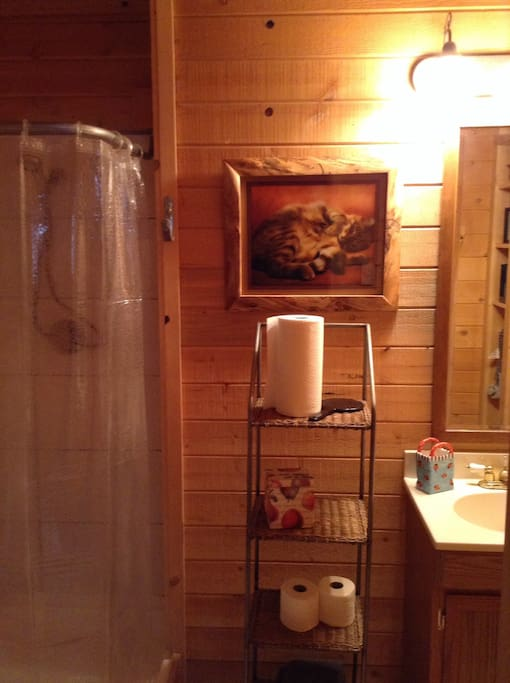 Bathroom has plenty of storage area.