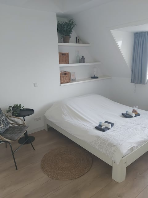 Room near Amsterdam and Windmill area